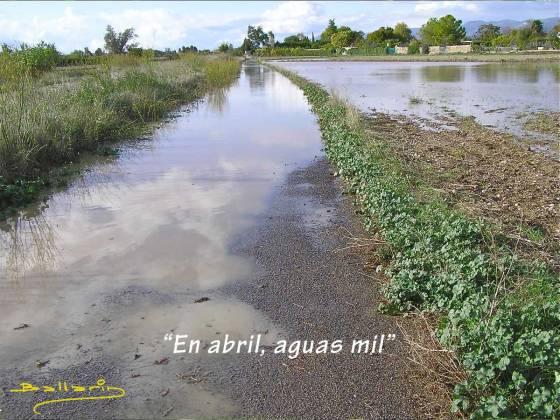 abril-aguas-mil