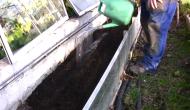 Como hacer semilleros. Huerto y Jardín (2ªParte)