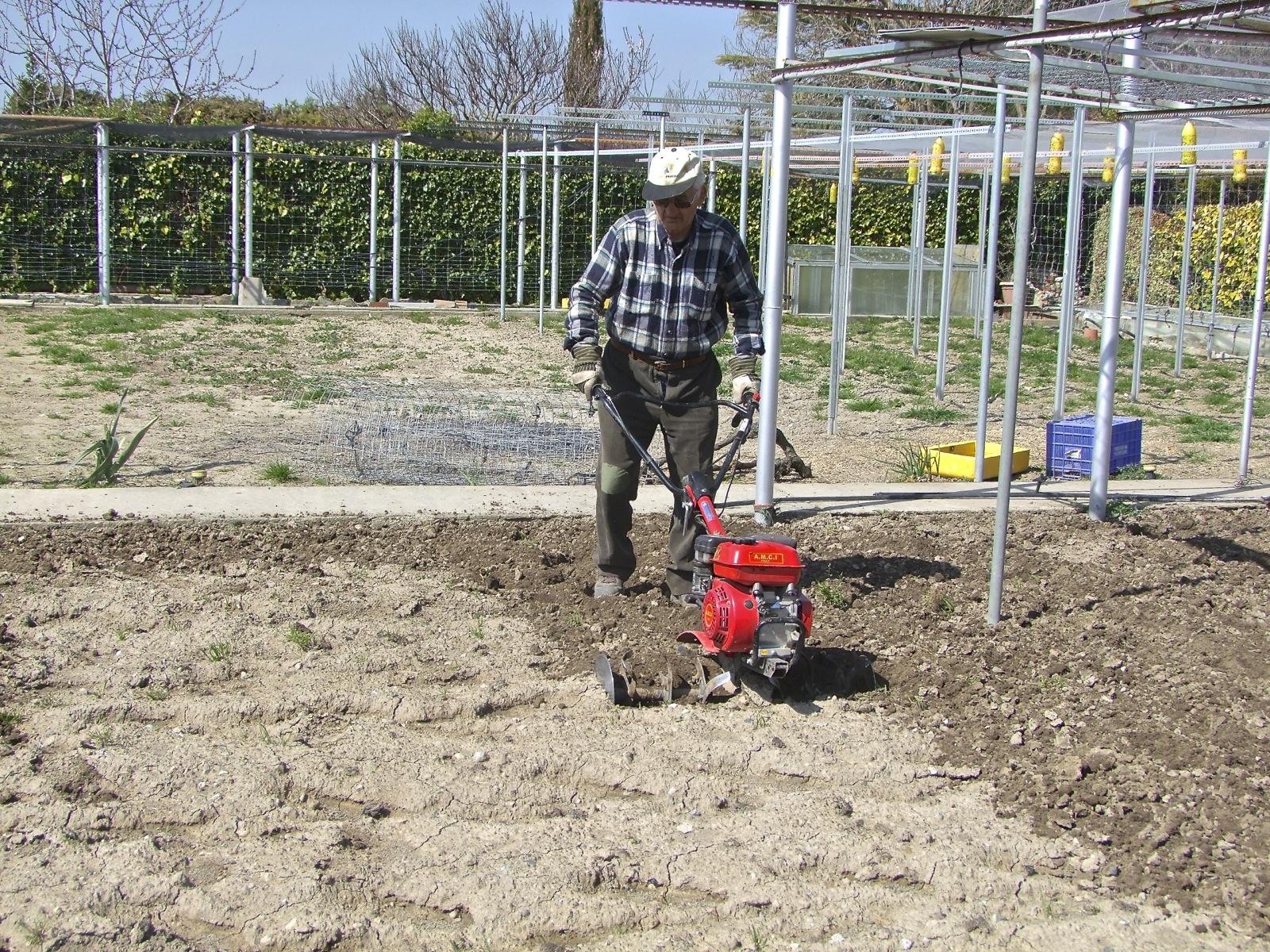 Sembrar las patatas el huerto familiar for Preparar el huerto en invierno