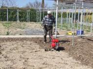 Retirar las malas hierbas ylabrar