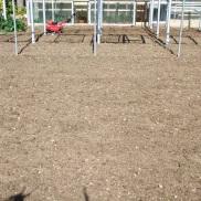 Preparando la tierra (3)
