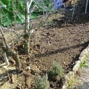 Hacemos una cava