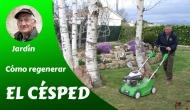 Cómo regenerar el césped (video-tutorial)