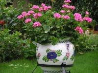 Plantar las flores deverano