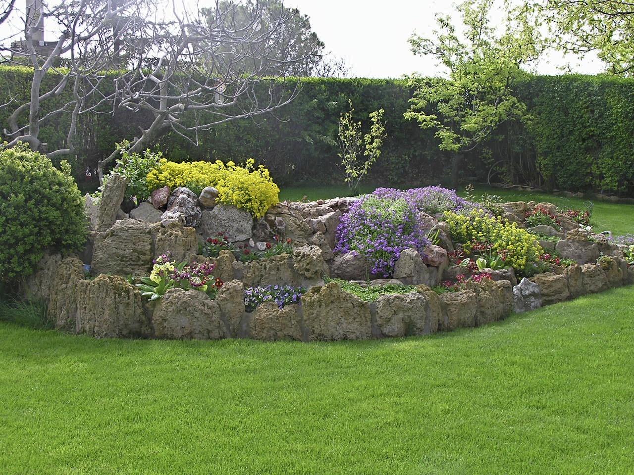 Plantar rocalla de verano el huerto familiar - Plantas de jardin fotos ...