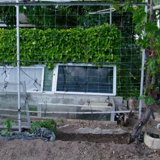 Elegimos un pequeño rincón en el huerto, si es en semisombra mejor.
