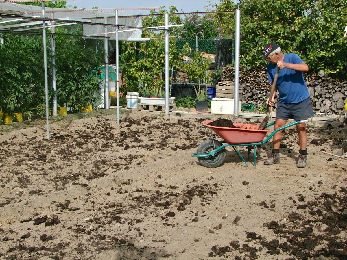 Preparaci n de la tierra para plantar coles el huerto for Preparar el huerto en invierno