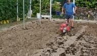 Preparación de la tierra para plantarcoles
