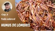 Todo sobre el humus de lombriz- 1ªparte